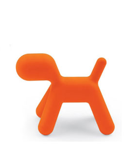 Chien Puppy Orange