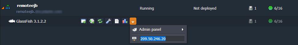 GlassFish Server Public IP