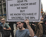 OWS doesn't know what they want but they're sure the success and productive have it