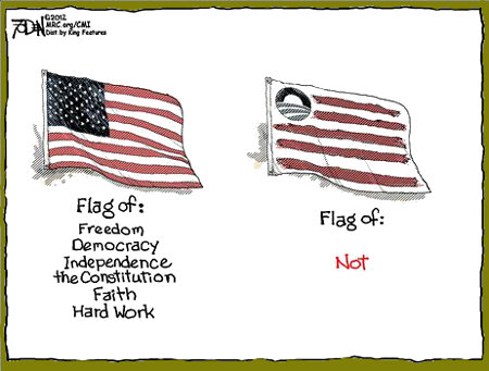 Flags - American vs. Obama