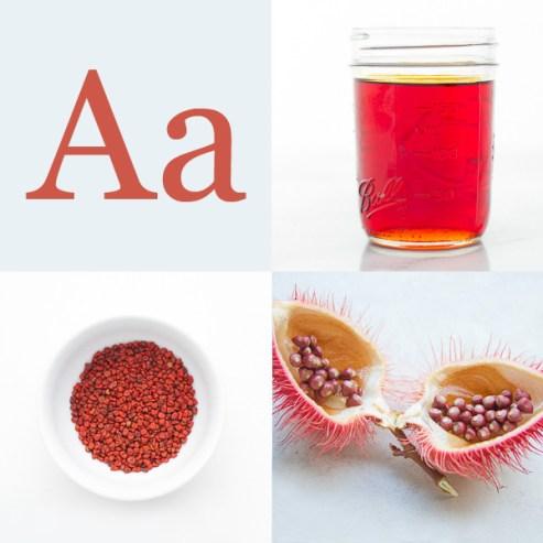 A-Glossary