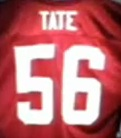 terry-tate-office-linebacker