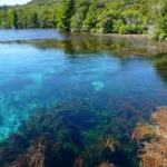 First step in the direction for fresh water - New Zealand Govornment