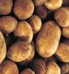 Wally Richards - July is potato planting month