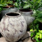 Timeless Jars and Pots