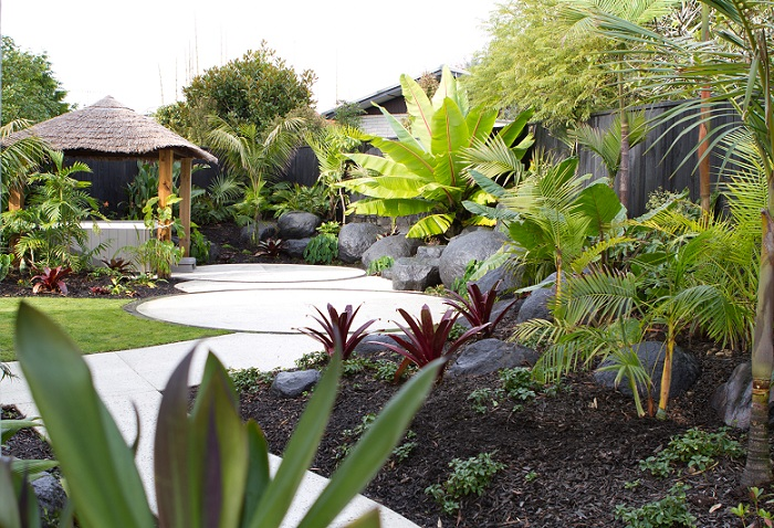 Tropical delight on the shore peter fry for Small garden designs nz
