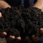 Idea videos: Compost Bins & Buckets