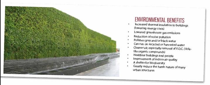 Green Walls Natural Habitats Sandra Batley Nz
