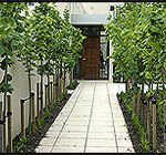 Find Landscape Designers; Landscape Architects in Christchurch