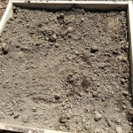 First, regular soil went into the two new raised beds.
