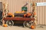 Even our antique freight truck got dressed up for Fall Festival!