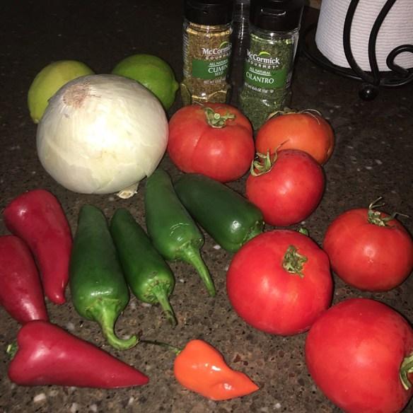 salsa ingredients 2