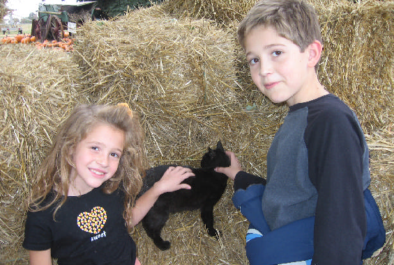 alli-and-brandon-with-cat