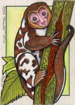 090314-cuscus