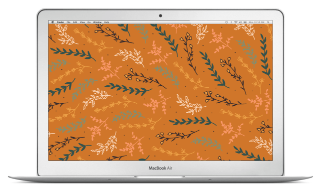 meadow-macbook-air