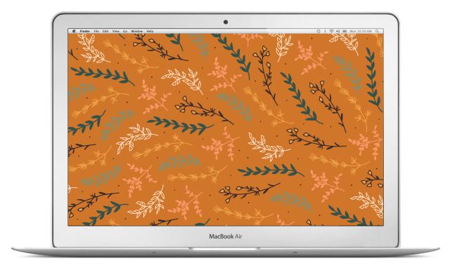 meadow-macbook-air