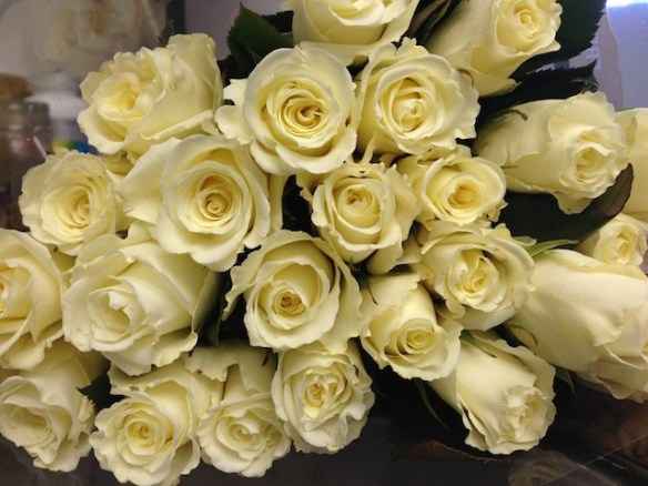 White Roses for Valentine's Day
