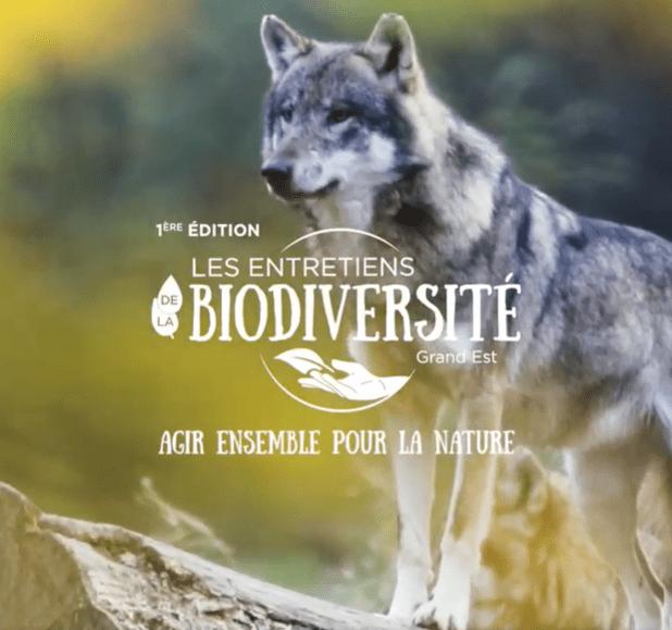 Entretiens de la biodiversité