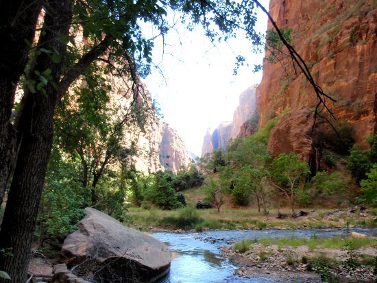 Vue de la Virgin River - Zion National Park