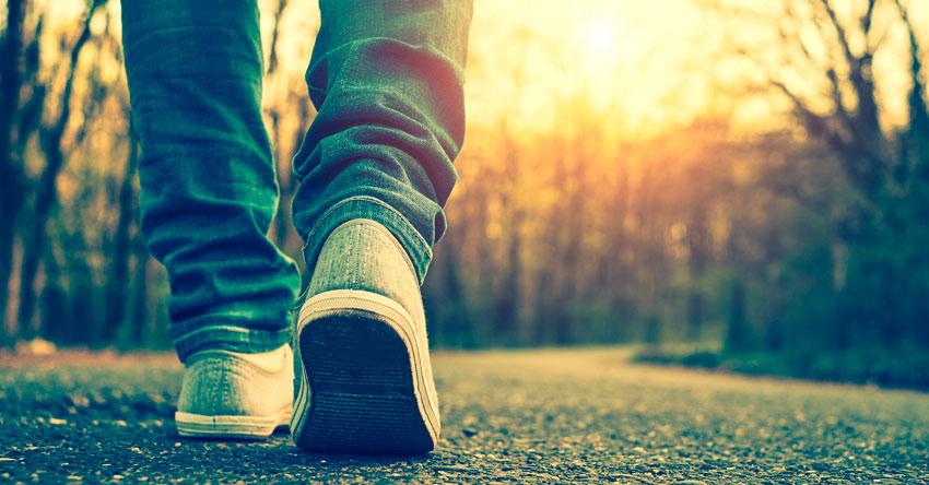 reseña la sabiduria de Dios para caminar por la vida proverbios tim kathy keller