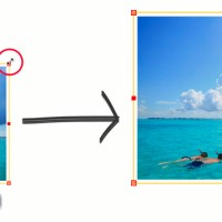 Editor Tutorial: How to Resize and Move Photos