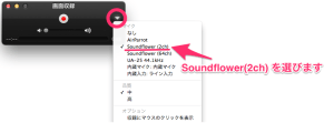 OtherViews_と_画面収録_と_Soundflower-1.6.6b.dmg_-_soundflower_-_Soundflower_1.6.6_Installer__includes_SoundflowerBed__--_Use_this_for_OS_10.6_-_OS_10.8_-_Soundflower_system_extension_for_interapplication_audio_routing._-_Google_Project_Hosting-2