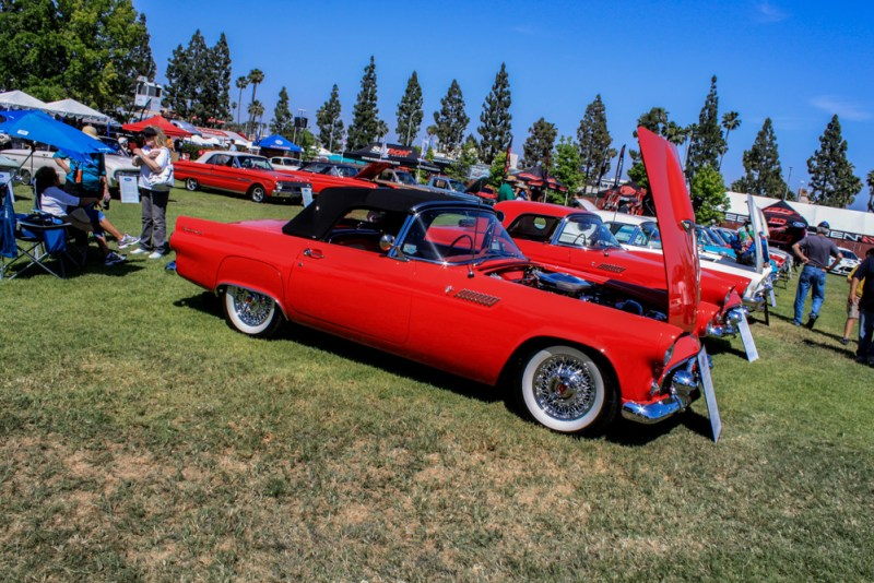 Fabulous_Fords_2015_other-fords-97