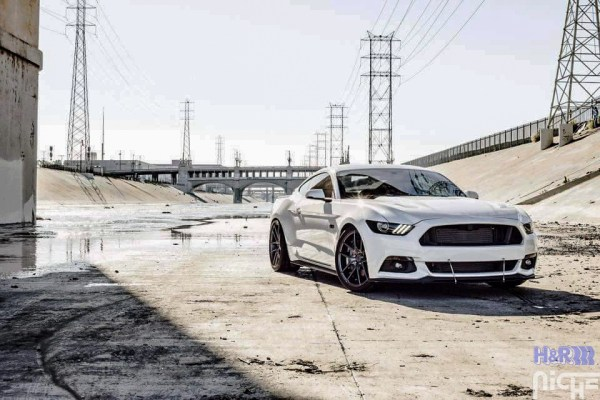 Quick Snap: Ken B's S550 Ford Mustang GT Lowered on H&R Springs @ ModAuto