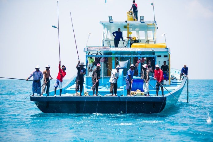 Image showing Maldivian fishermen pole and line fishing for tuna on a boat