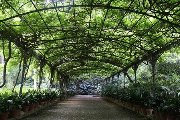 Jardin Botanico La Concepcion De Malaga