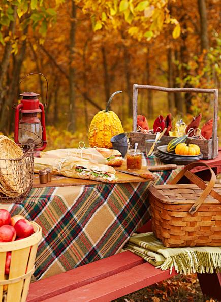 picnic-berlines