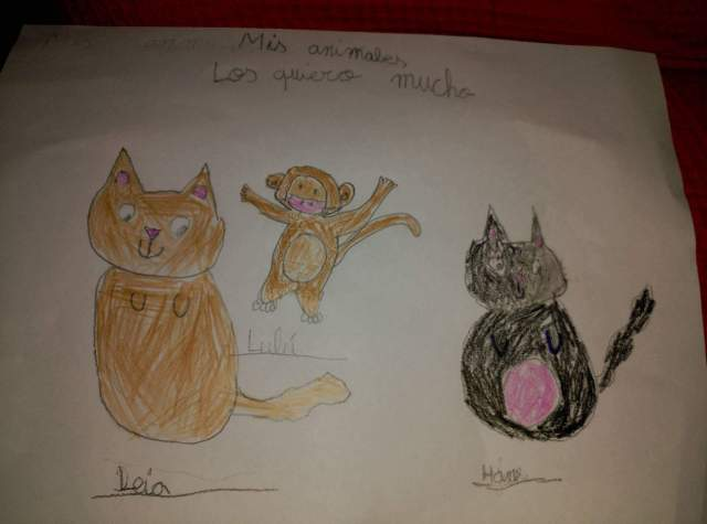 dibujo niño animales