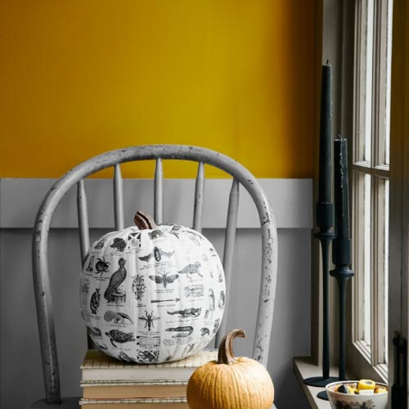 halloween-crafts-diy-pumpkin-ideas-1011-3EAylo-lgn