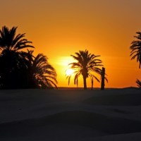 Purple Tips: Tunisia - The ideal destination for winter sun