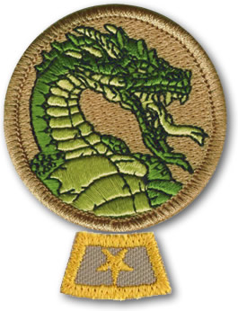 dragon-patrol-honor