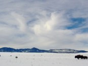 philmont-winter-3