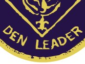 den-leader-patch-illustration
