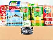 Scouting-for-Food-featured