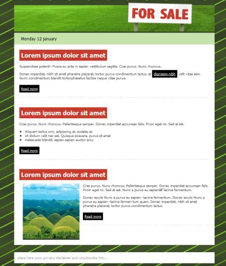plantilla de email para inmobiliarias