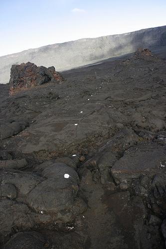 Ile de la Réunion - janvier 2011 - 278