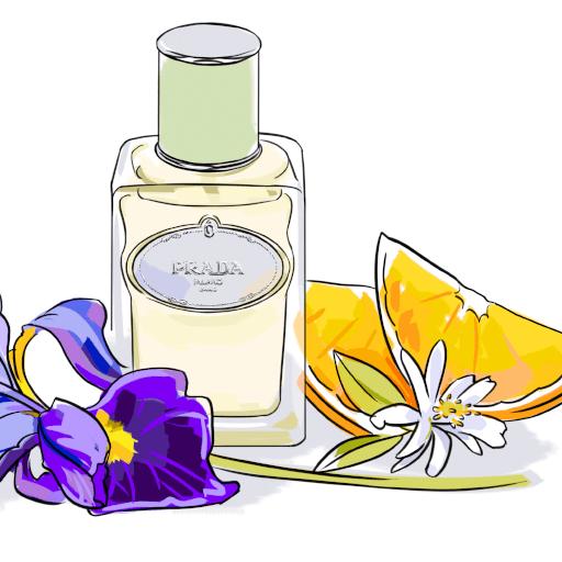 My Perfume Affair: Berburu Parfum Murah