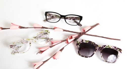 Dolce & Gabbana Almond Flowers Sunglasses and Glasses