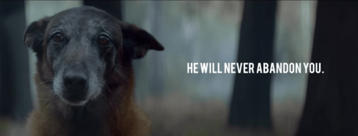 "Sad looking dog with ""He will never abandon you"" banner"