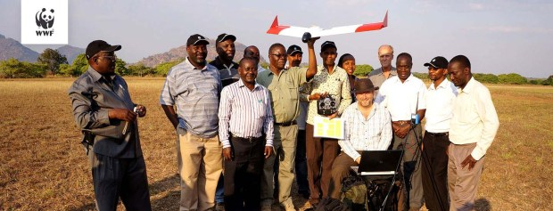 Monitoring the wildlife in Tanzania from the skies