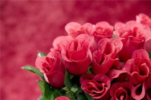 Treat the one you love to flowers