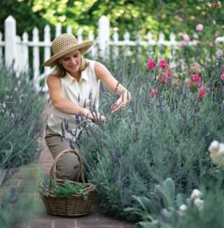 Gardening best for job satisfaction