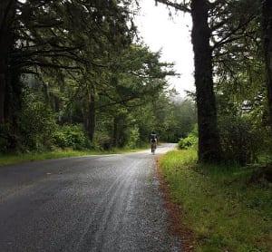 Road to HI Point Reyes