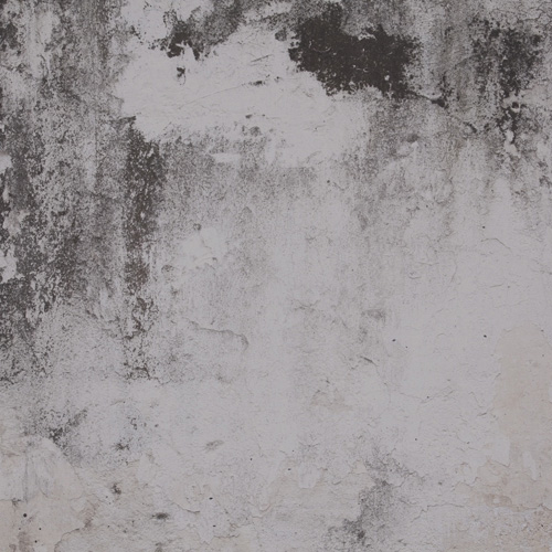 Cold Concrete Wallpaper Mural M9216
