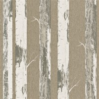 Contemporary Metallic Gold Paper Birch Wallpaper R4366
