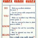 Beans Are Patriotic!